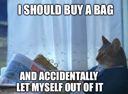 I should buy a bag | I SHOULD BUY A BAG AND ACCIDENTALLY LET MYSELF OUT OF IT | image tagged in memes,i should buy a boat cat,i should buy a bag too | made w/ Imgflip meme maker