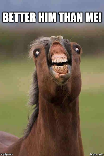 horse face | BETTER HIM THAN ME! | image tagged in horse face | made w/ Imgflip meme maker