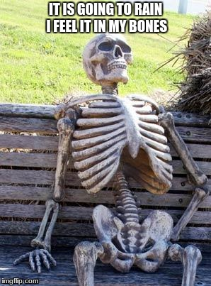 Waiting Skeleton | IT IS GOING TO RAIN I FEEL IT IN MY BONES | image tagged in memes,waiting skeleton | made w/ Imgflip meme maker