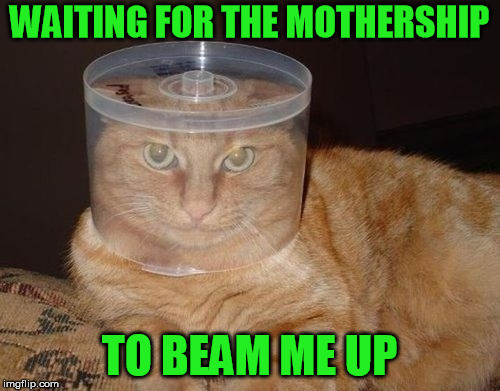 WAITING FOR THE MOTHERSHIP TO BEAM ME UP | made w/ Imgflip meme maker
