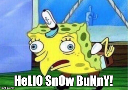 Mocking Spongebob Meme | HeLlO SnOw BuNnY! | image tagged in memes,mocking spongebob | made w/ Imgflip meme maker