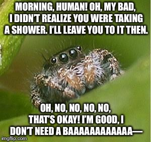*drowns* | MORNING, HUMAN! OH, MY BAD, I DIDN'T REALIZE YOU WERE TAKING A SHOWER. I'LL LEAVE YOU TO IT THEN. OH, NO, NO, NO, NO, THAT'S OKAY! I'M GOOD, | image tagged in misunderstood spider | made w/ Imgflip meme maker