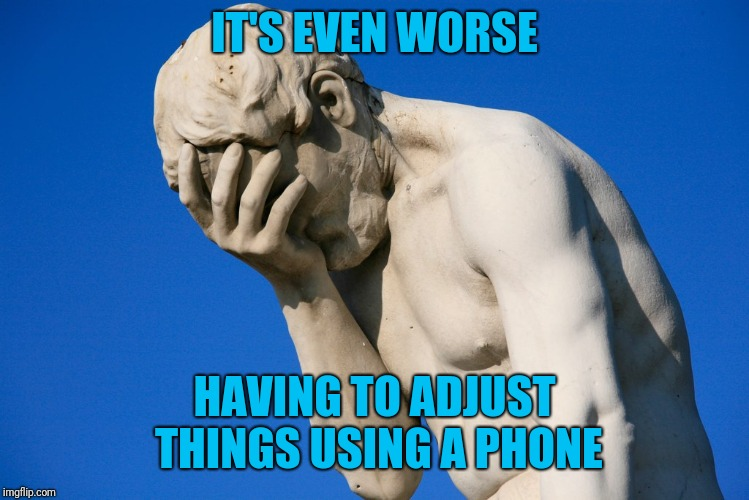 Embarrassed statue  | IT'S EVEN WORSE HAVING TO ADJUST THINGS USING A PHONE | image tagged in embarrassed statue | made w/ Imgflip meme maker