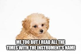 Kill me later | ME TOO BUT I READ ALL THE TIMES WITH THE INSTRUMENT'S NAME | image tagged in kill me later | made w/ Imgflip meme maker