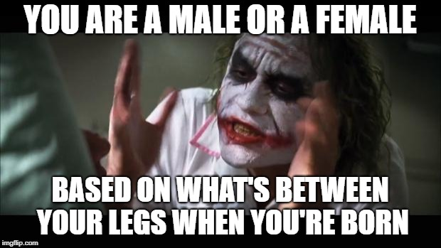 And everybody loses their minds | YOU ARE A MALE OR A FEMALE BASED ON WHAT'S BETWEEN YOUR LEGS WHEN YOU'RE BORN | image tagged in memes,and everybody loses their minds | made w/ Imgflip meme maker