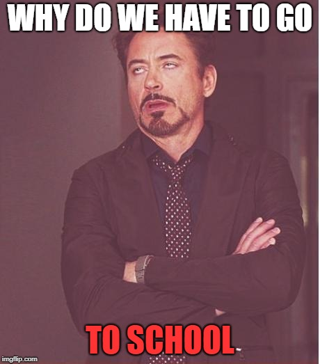 Face You Make Robert Downey Jr Meme | WHY DO WE HAVE TO GO TO SCHOOL | image tagged in memes,face you make robert downey jr | made w/ Imgflip meme maker