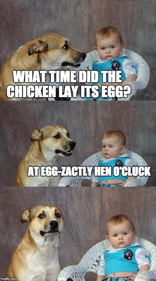 Dad Joke Dog Meme | WHAT TIME DID THE CHICKEN LAY ITS EGG? AT EGG-ZACTLY HEN O'CLUCK | image tagged in memes,dad joke dog | made w/ Imgflip meme maker