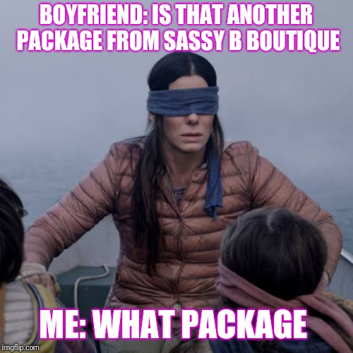 Birdbox | BOYFRIEND: IS THAT ANOTHER PACKAGE FROM SASSY B BOUTIQUE ME: WHAT PACKAGE | image tagged in birdbox | made w/ Imgflip meme maker