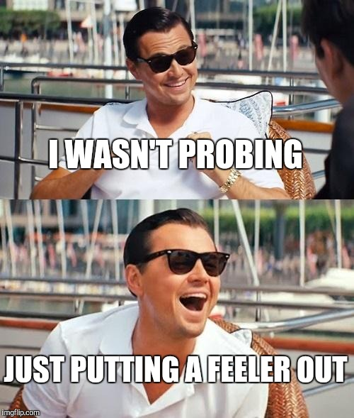Leonardo Dicaprio Wolf Of Wall Street Meme | I WASN'T PROBING JUST PUTTING A FEELER OUT | image tagged in memes,leonardo dicaprio wolf of wall street | made w/ Imgflip meme maker