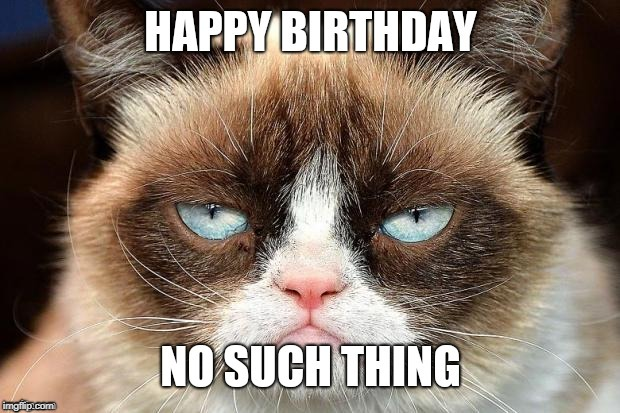 image tagged in grumpy cat | made w/ Imgflip meme maker