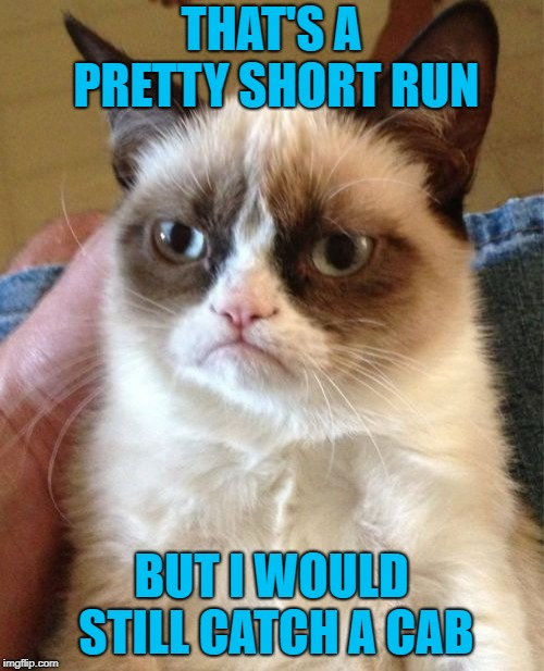 Grumpy Cat Meme | THAT'S A PRETTY SHORT RUN BUT I WOULD STILL CATCH A CAB | image tagged in memes,grumpy cat | made w/ Imgflip meme maker
