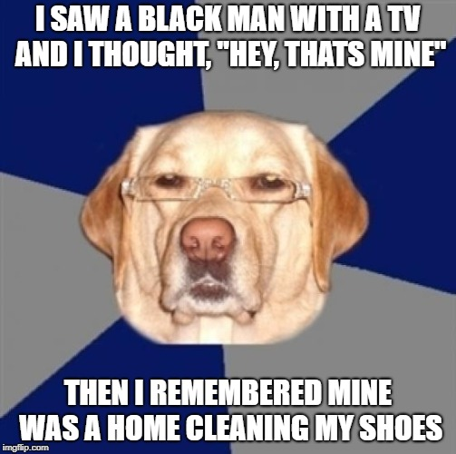 "racist dog | I SAW A BLACK MAN WITH A TV AND I THOUGHT, ""HEY, THATS MINE"" THEN I REMEMBERED MINE WAS A HOME CLEANING MY SHOES 