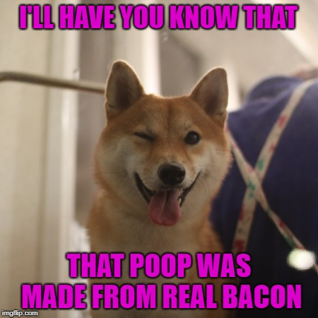 I'LL HAVE YOU KNOW THAT THAT POOP WAS MADE FROM REAL BACON | made w/ Imgflip meme maker