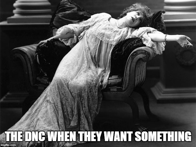Vintage fainting woman | THE DNC WHEN THEY WANT SOMETHING | image tagged in vintage fainting woman | made w/ Imgflip meme maker