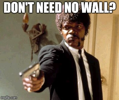 DON'T NEED NO WALL? | DON'T NEED NO WALL? | image tagged in memes,say that again i dare you,illegal immigration,open borders,threat to our national secuirty,build the wall | made w/ Imgflip meme maker