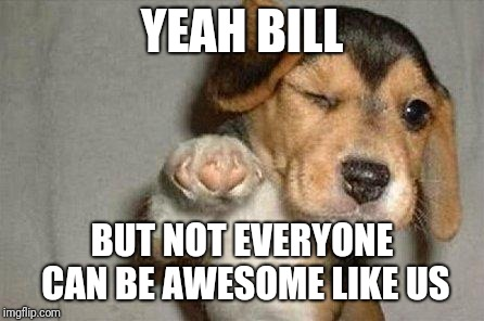Awesome Dog | YEAH BILL BUT NOT EVERYONE CAN BE AWESOME LIKE US | image tagged in awesome dog | made w/ Imgflip meme maker