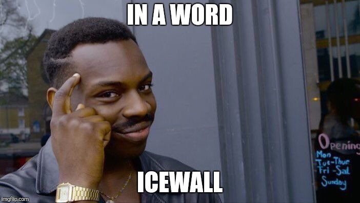 Roll Safe Think About It Meme | IN A WORD ICEWALL | image tagged in memes,roll safe think about it | made w/ Imgflip meme maker