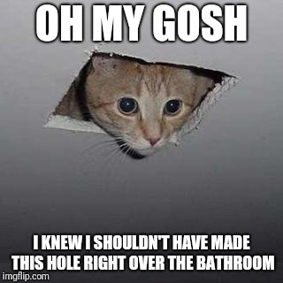 Ceiling Cat Meme | OH MY GOSH I KNEW I SHOULDN'T HAVE MADE THIS HOLE RIGHT OVER THE BATHROOM | image tagged in memes,ceiling cat | made w/ Imgflip meme maker