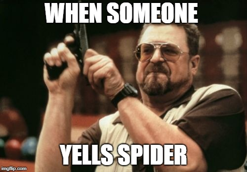 Am I The Only One Around Here Meme | WHEN SOMEONE YELLS SPIDER | image tagged in memes,am i the only one around here | made w/ Imgflip meme maker