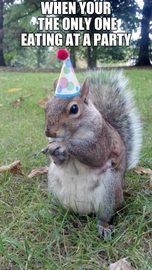 Super Birthday Squirrel | WHEN YOUR THE ONLY ONE EATING AT A PARTY | image tagged in memes,super birthday squirrel | made w/ Imgflip meme maker
