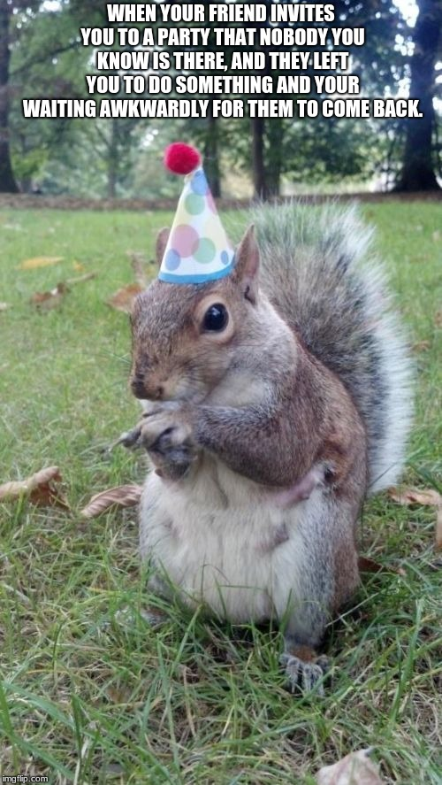 Super Birthday Squirrel Meme |  WHEN YOUR FRIEND INVITES YOU TO A PARTY THAT NOBODY YOU KNOW IS THERE, AND THEY LEFT YOU TO DO SOMETHING AND YOUR WAITING AWKWARDLY FOR THEM TO COME BACK. | image tagged in memes,super birthday squirrel | made w/ Imgflip meme maker