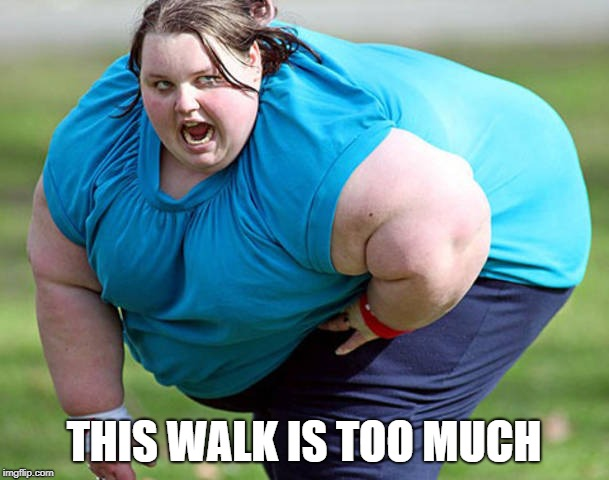 THIS WALK IS TOO MUCH | made w/ Imgflip meme maker
