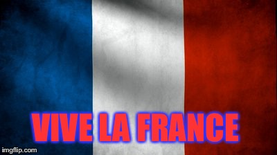 Vive la France | VIVE LA FRANCE | image tagged in vive la france | made w/ Imgflip meme maker