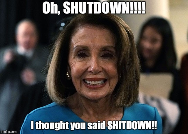 Nancy Pelosi lifeless eyes | Oh, SHUTDOWN!!!! I thought you said SHITDOWN!! | image tagged in nancy pelosi lifeless eyes | made w/ Imgflip meme maker