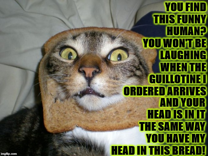 YOU FIND THIS FUNNY HUMAN? YOU WON'T BE LAUGHING WHEN THE GUILLOTINE I ORDERED ARRIVES AND YOUR HEAD IS IN IT THE SAME WAY YOU HAVE MY HEAD  | image tagged in you're dead | made w/ Imgflip meme maker