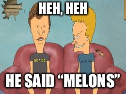 "Bevis n Butthead | HEH, HEH HE SAID ""MELONS"" 