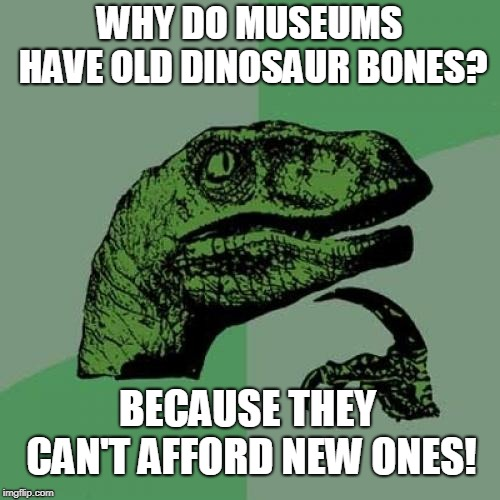 Philosoraptor Meme | WHY DO MUSEUMS HAVE OLD DINOSAUR BONES? BECAUSE THEY CAN'T AFFORD NEW ONES! | image tagged in memes,philosoraptor | made w/ Imgflip meme maker