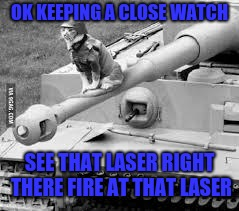 this cat finally defeats the laser Army week jan 9th-16th (A NikoBellic event) | OK KEEPING A CLOSE WATCH SEE THAT LASER RIGHT THERE FIRE AT THAT LASER | image tagged in army cat,army week,nikobellic | made w/ Imgflip meme maker