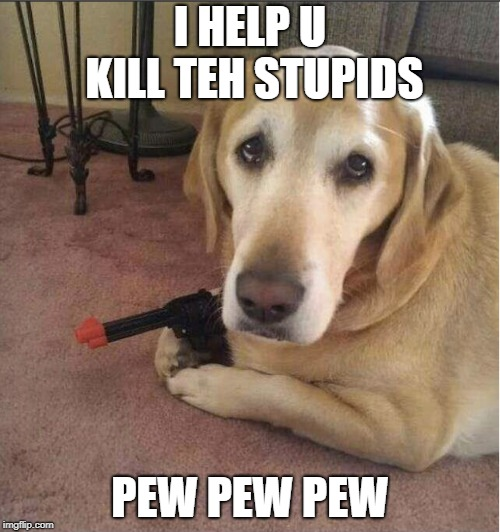 I HELP U KILL TEH STUPIDS PEW PEW PEW | image tagged in pew pew pew,dog | made w/ Imgflip meme maker