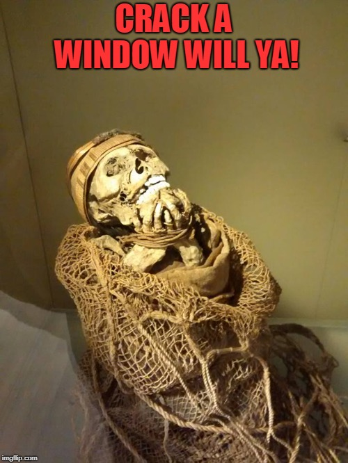 mummy | CRACK A WINDOW WILL YA! | image tagged in mummy | made w/ Imgflip meme maker
