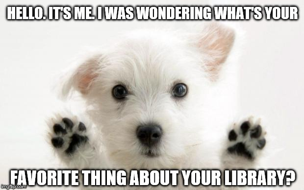 cute dog | HELLO. IT'S ME. I WAS WONDERING WHAT'S YOUR FAVORITE THING ABOUT YOUR LIBRARY? | image tagged in cute dog | made w/ Imgflip meme maker