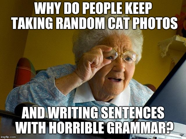 Grandma Finds Cat Memes | WHY DO PEOPLE KEEP TAKING RANDOM CAT PHOTOS AND WRITING SENTENCES WITH HORRIBLE GRAMMAR? | image tagged in memes,grandma finds the internet | made w/ Imgflip meme maker