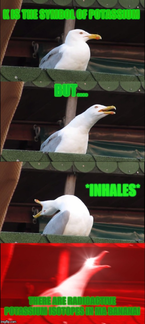 Inhaling Seagull Meme | K IS THE SYMBOL OF POTASSIUM BUT.... *INHALES* THERE ARE RADIOACTIVE POTASSIUM ISOTOPES IN MA BANANA! | image tagged in memes,inhaling seagull | made w/ Imgflip meme maker