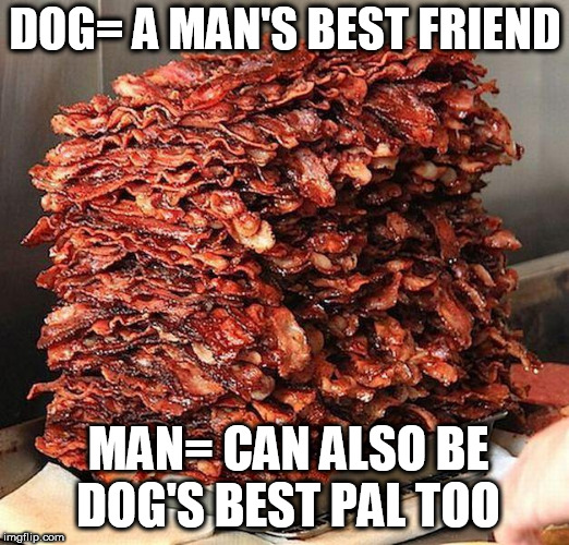 DOG= A MAN'S BEST FRIEND MAN= CAN ALSO BE DOG'S BEST PAL TOO | made w/ Imgflip meme maker