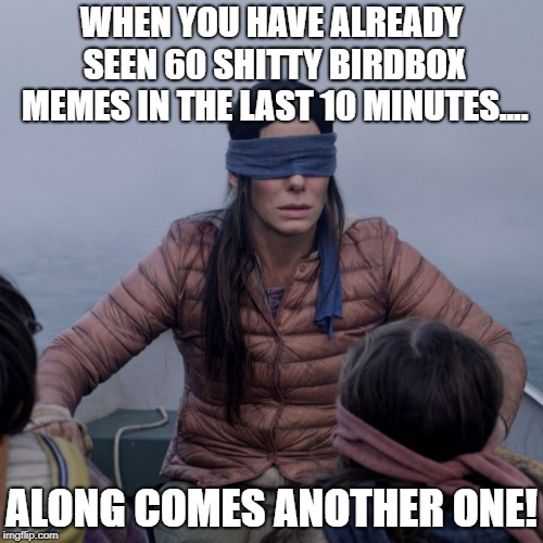 Bird Box Meme | WHEN YOU HAVE ALREADY SEEN 60 SHITTY BIRDBOX MEMES IN THE LAST 10 MINUTES.... ALONG COMES ANOTHER ONE! | image tagged in bird box | made w/ Imgflip meme maker