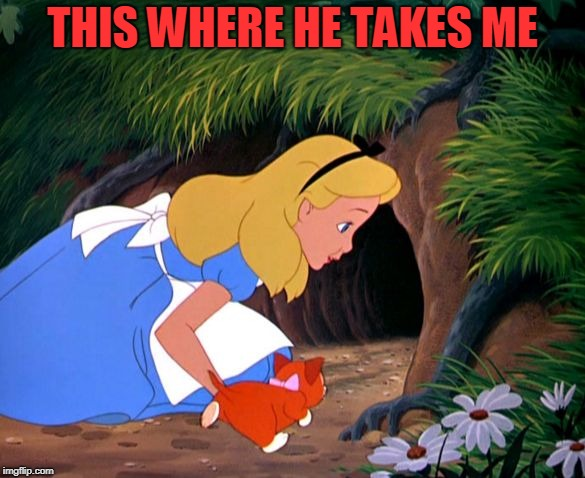 Alice Looking Down the Rabbit Hole | THIS WHERE HE TAKES ME | image tagged in alice looking down the rabbit hole | made w/ Imgflip meme maker