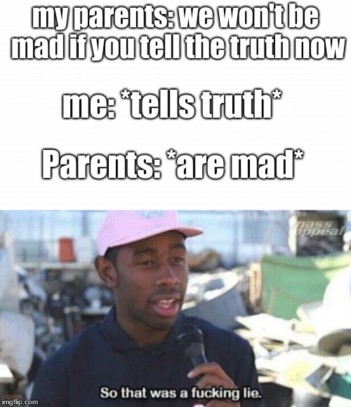 my parents: we won't be mad if you tell the truth now me: *tells truth* Parents: *are mad* | image tagged in so that was a fucking lie | made w/ Imgflip meme maker