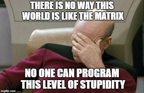 Captain Picard Facepalm Meme | THERE IS NO WAY THIS WORLD IS LIKE THE MATRIX NO ONE CAN PROGRAM THIS LEVEL OF STUPIDITY | image tagged in memes,captain picard facepalm | made w/ Imgflip meme maker