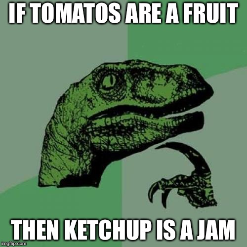 Philosoraptor Meme | IF TOMATOS ARE A FRUIT THEN KETCHUP IS A JAM | image tagged in memes,philosoraptor | made w/ Imgflip meme maker