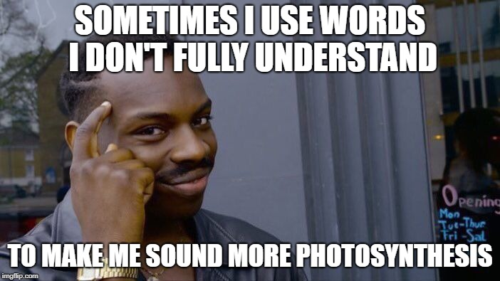 I am abundant, so please upvote! | SOMETIMES I USE WORDS I DON'T FULLY UNDERSTAND TO MAKE ME SOUND MORE PHOTOSYNTHESIS | image tagged in memes,roll safe think about it | made w/ Imgflip meme maker
