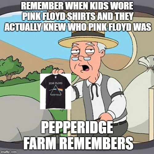 Pepperidge Farm Remembers Meme | REMEMBER WHEN KIDS WORE PINK FLOYD SHIRTS AND THEY ACTUALLY KNEW WHO PINK FLOYD WAS PEPPERIDGE FARM REMEMBERS | image tagged in memes,pepperidge farm remembers | made w/ Imgflip meme maker