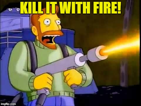 Kill it with fire | KILL IT WITH FIRE! | image tagged in kill it with fire | made w/ Imgflip meme maker