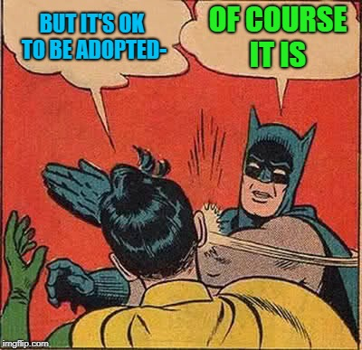 Batman Slapping Robin Meme | BUT IT'S OK TO BE ADOPTED- OF COURSE IT IS | image tagged in memes,batman slapping robin | made w/ Imgflip meme maker