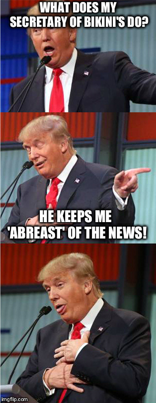 Bad Pun Trump | WHAT DOES MY SECRETARY OF BIKINI'S DO? HE KEEPS ME 'ABREAST' OF THE NEWS! | image tagged in bad pun trump | made w/ Imgflip meme maker