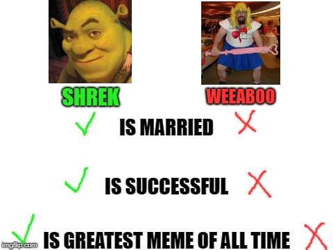 Shrek > Weebs | IS MARRIED IS SUCCESSFUL IS GREATEST MEME OF ALL TIME SHREK WEEABOO | image tagged in blank white template,shrek,better than,weebs | made w/ Imgflip meme maker