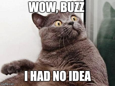 Surprised cat | WOW, BUZZ I HAD NO IDEA | image tagged in surprised cat | made w/ Imgflip meme maker